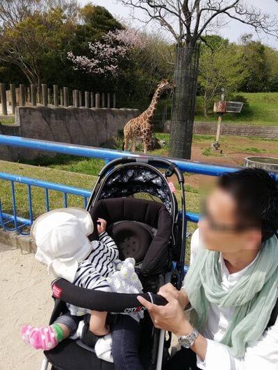 2019GW千葉市動物公園混雑